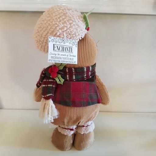 Gingerbread-Man-Small-54286-2.jpg